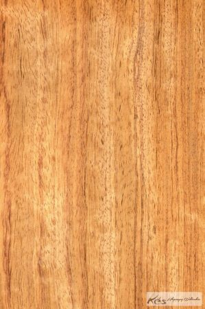 Bubinga sapwood markolat tömb 32x43x127mm